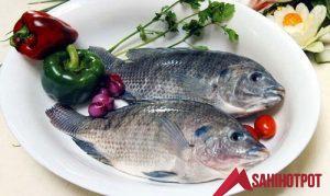 Có thai ăn cá rô phi được không?